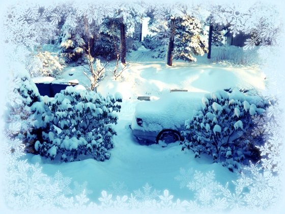 Christmas 2012+Norwegian Christmas+Norway+Christmas eve+ juleaften+juletre +partyhats - white christmas - SNOW