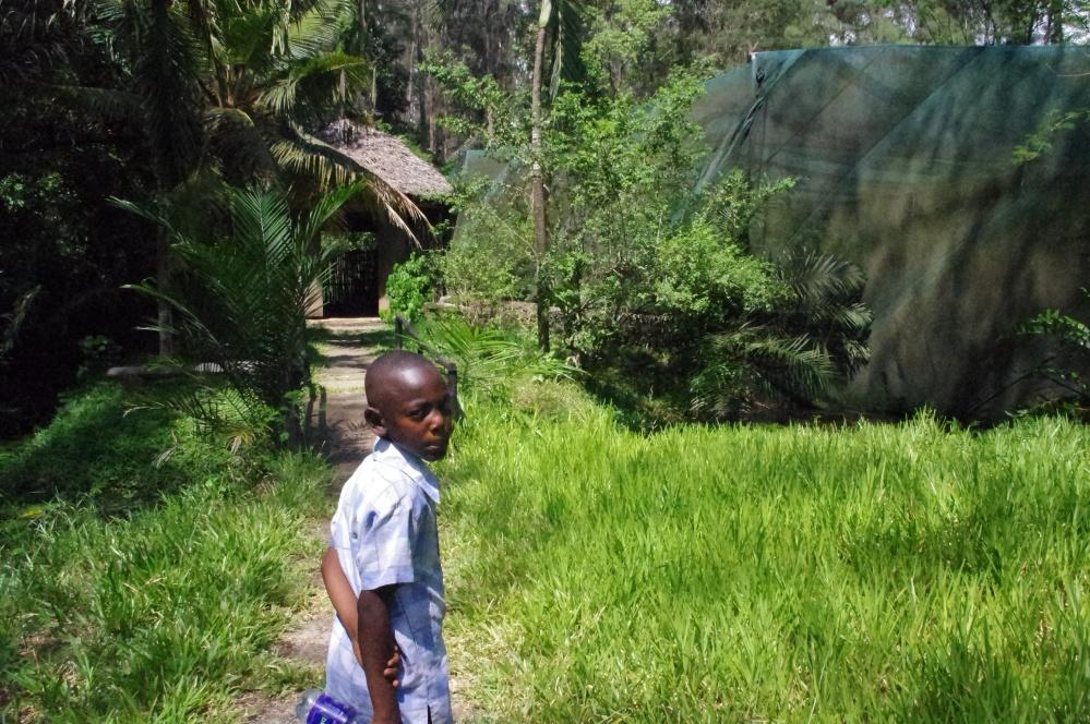 Butterfly Pavilion Bamburi Cement Factory Mombasa Kenya Haller Park