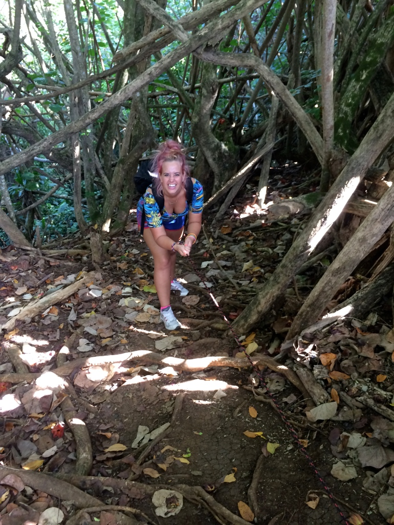 Wailua - KAuai - Hawaii - Waterfall - Wailua falls - hike -  tripadvisor