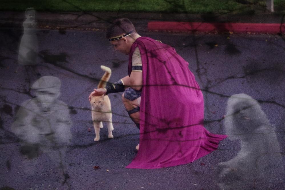 Halloween in Hawaii 2014 - Pumpkins - Costumes - 300 - Spartan costume - Jack O' Lanterns - Cat - Ghosts