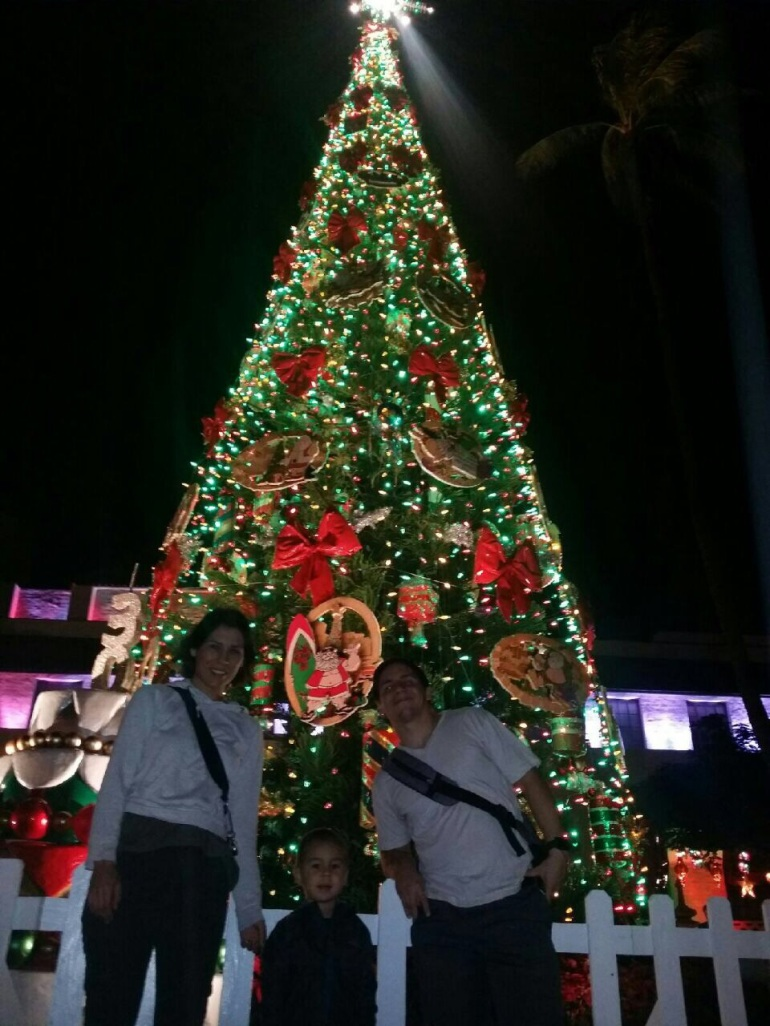 Honolulu Christmas tree 2014