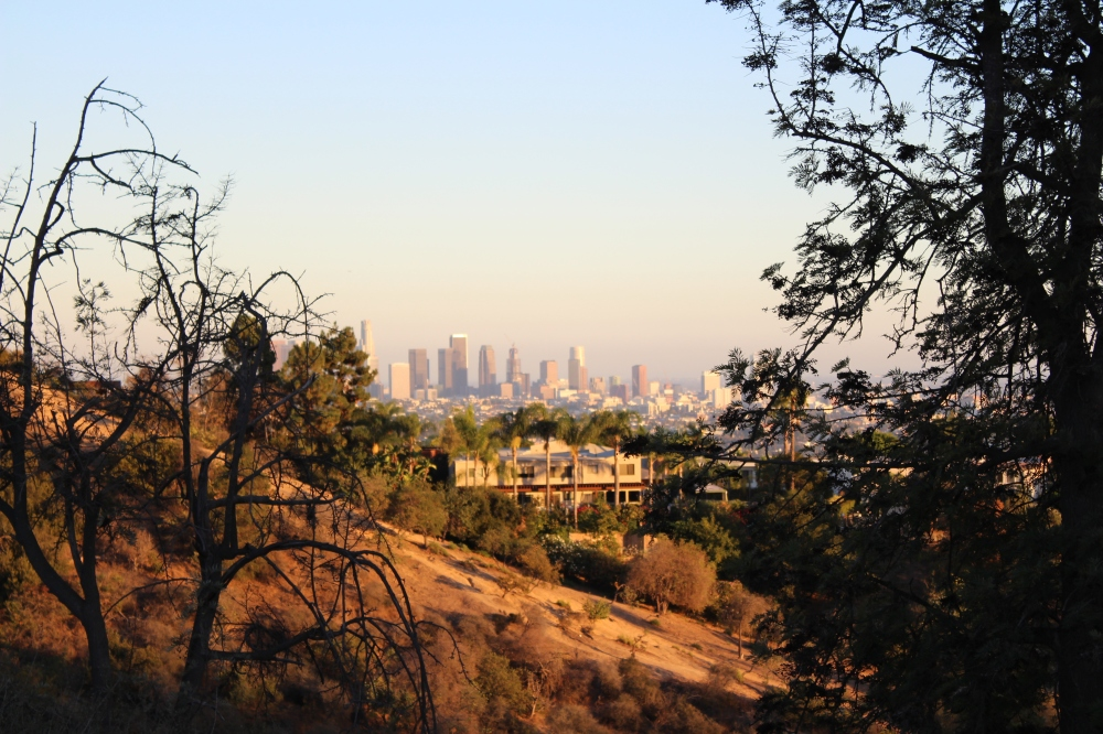 Los Angeles Viewed from Griffith Park
