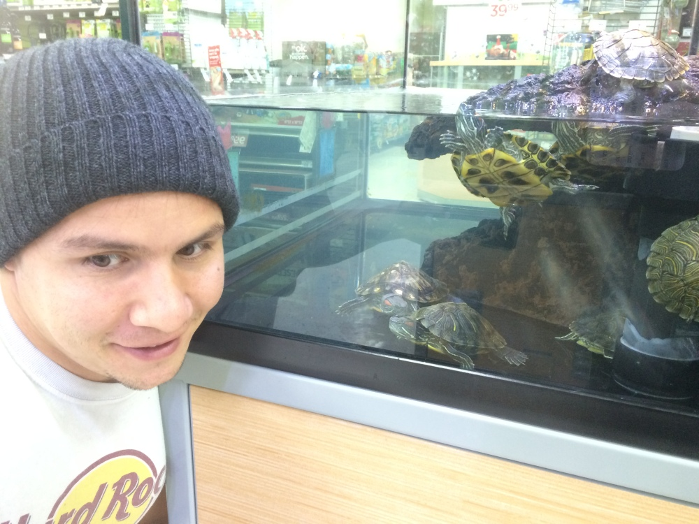 Petco Turtles Los Angeles